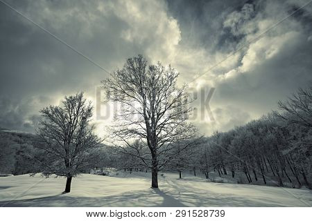 dramatic sky of toned winter landscape in Nebrodi Park at evening, Sicily