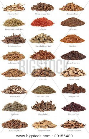 Large collection of chinese herbs used in alternative medicine with titles isolated over white background.