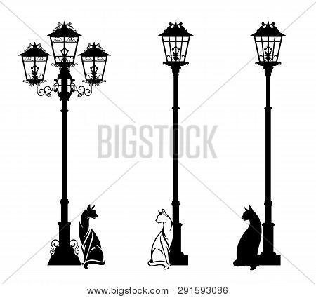 Homeless Cat Sitting Under Streetlight - Black And White Vector Silhouette Design