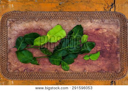 Fresh Kaffir Lime Leaves From Above On Wooden Table Flat Lay.