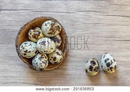 Simple Easter Flat Lay Still Life With Quail Eggs On Brown Wooden Background.