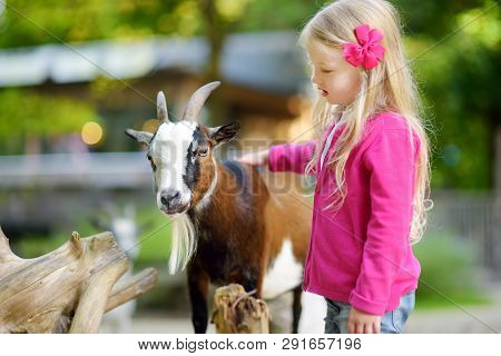 Cute Little Girl Petting And Feeding A Goat At Petting Zoo. Child Playing With A Farm Animal On Sunn