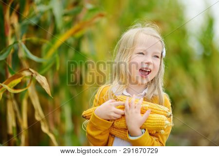 Adorable Girl Playing In A Corn Field On Beautiful Autumn Day. Pretty Child Holding A Cob Of Corn. H