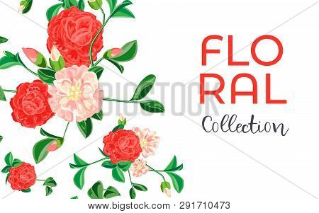Camellia Flower Collection Concept Banner. Cartoon Illustration Of Camellia Flower Collection Vector