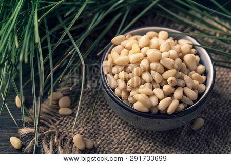 Cedar pine nuts in a wooden spoon