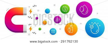 Magnet Attracting. Refill Water, Christmas Holly And Oil Drop Icons Simple Set. Water Bottle, Evapor