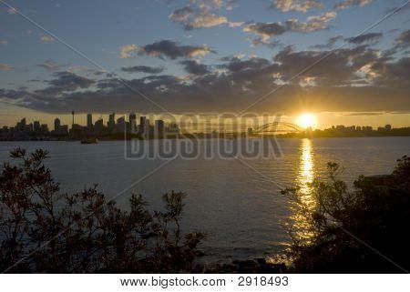Sydney City Harbour Sunset