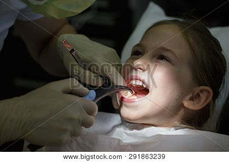 Smiling Little Girl In The Dental Office, Getting Her Teeth Checked By Dentist. Prevention, Pediatri