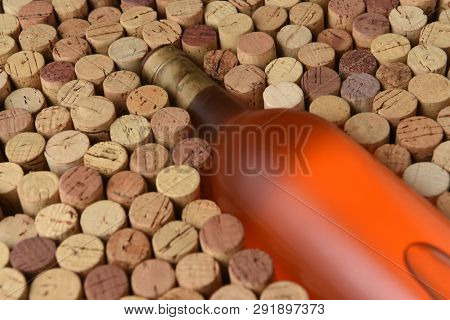 Blush Wine Still Life: Closeup of a bottle of White Zinfandel wine surrounded by used corks with copy space, and shallow depth of field.  The bottle has no label.