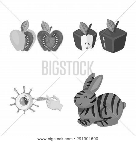 Vector Design Of Transgenic And Organic Icon. Set Of Transgenic And Synthetic Stock Symbol For Web.