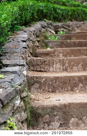 Part Of A Small Stone Stairs At A Green Garden In Summer. Madeira, Portugal