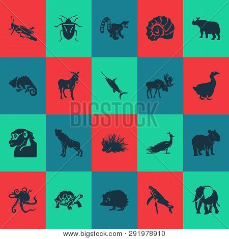 Animal Icons Set With Hyena, Porcupine, Chamelon And Other Gorilla Elements. Isolated Vector Illustr