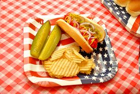 Independence Day American Picnic Hot Dog Lunch