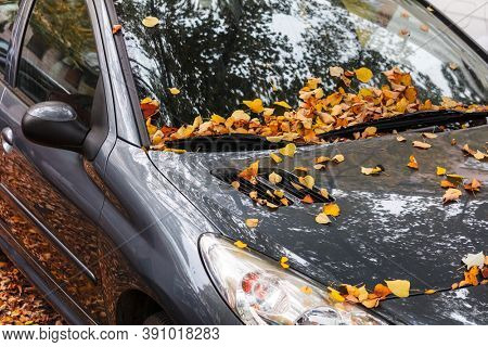 Urban autumn landscape. Car covered with autumn leaves.