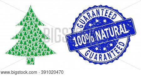 Guaranteed 100 Percent Natural Grunge Round Seal Imitation And Vector Fractal Collage Fir-tree. Blue