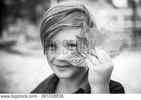 Kid On An Autumn Holiday In The Farm. Bye Summer - Hi Autumn. Fair-haired Kid Playing With Leaves An