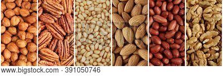 Nuts Collage, Long Banner - Hazelnuts, Pecan Nuts, Cedar Nuts, Almonds, Peanuts, Walnuts. Closeup