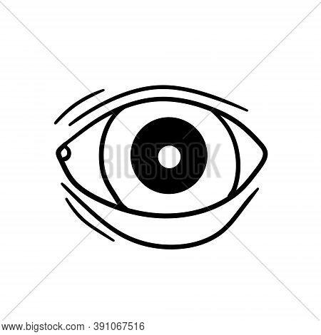 Eye. Human Organ Of Vision. View And Look. Eyelid And Eyeball.