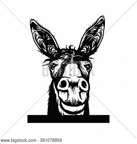 Donkey Sketch Vector Graphics A Monochrome Graphic The Head Peeking Donkey Head. Hand Drawn In A Gra
