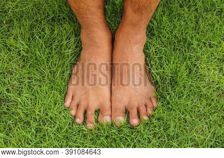 Foot Lawn Bare Man On The Green Grass