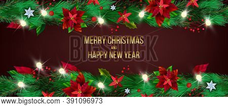 Christmas Winter Poinsettia Background With Evergreen Holiday Plants, Fir Branches, Stars. X-mas Tra