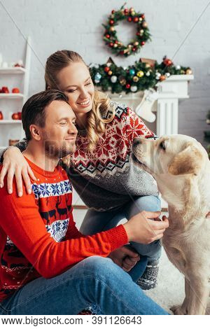 Couple In Knitted Sweaters Looking At Labrador In Decorated Apartment On Christmas
