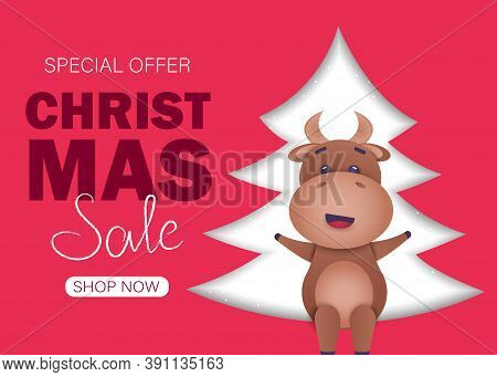 Christmas sale background. Merry Christmas sale card with bull. Merry Christmas card vector Illustration.Christmas. Christmas Vector. Christmas Background. Merry Christmas Vector. Merry Christmas banner. Christmas illustrations