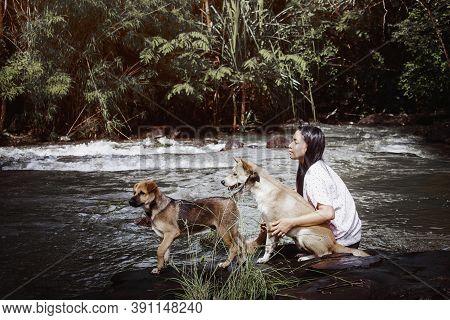 Dog took a puppy to catch a fish in a natural stream.