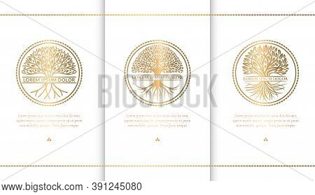 Set Of Abstract Golden Tree Logos. Modern Vector Illustration. Isolated Vector. Great For Emblem, Mo