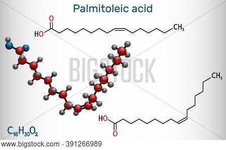 Palmitoleic Acid, Palmitoleate Molecule. It Is An Omega-7 Monounsaturated Fatty Acid. Structural Che