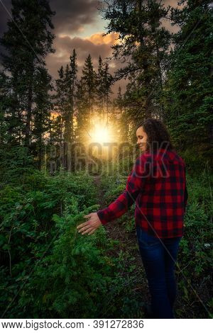 Girl Walking On A Beautiful Hiking Trail In The Woods And Canadian Nature During A Sunny Sunset. Nea