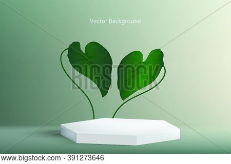 White Hexagon Shape On Light Navy Green Background With Green Leaves Like Monstera Plant. Backdrop C