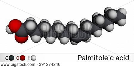 Palmitoleic Acid, Palmitoleate Molecule. It Is An Omega-7 Monounsaturated Fatty Acid. Molecular Mode