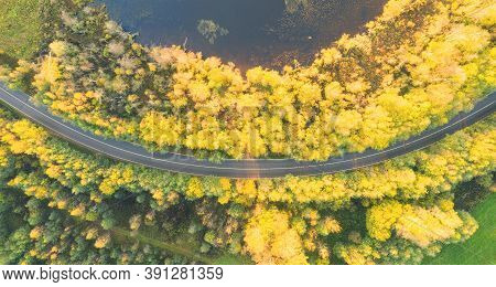 Aerial View Of Rural Car Road In Yellow And Orange Autumn Forest. Aerial Road Near The Lake. Top Vie