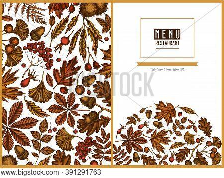 Menu Cover Design With Colored Fern, Dog Rose, Rowan, Ginkgo, Maple, Oak, Horse Chestnut, Chestnut H