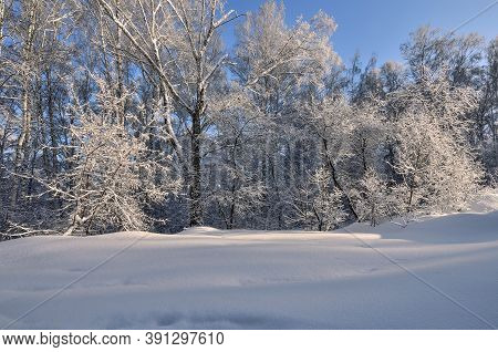 Fabulous Beauty Of Winter Landscape - View Of White Fluffy Snow Covered Forest, Glowing In Sunlight