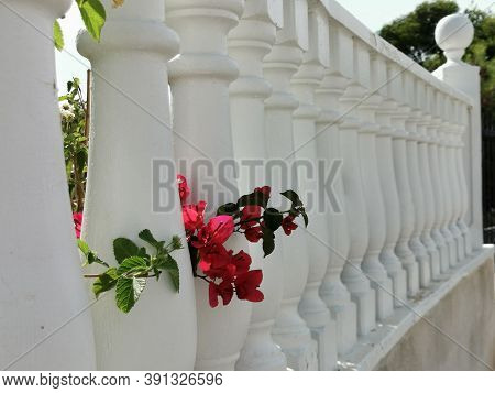 Photo Of A White Balustrade On A Sunny Day. Concrete Balustrade Painted In White Paint.