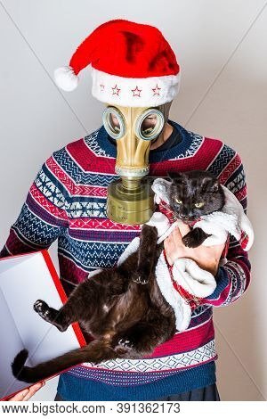 Person In Gas Mask Against Covid-19 In Christmas Hat Taking Of The Black Cat Of The Christmas Box