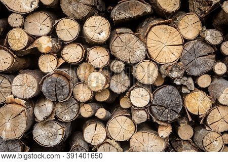 Timber Stack, Ends Of Logs For Texture Background. Woodpile Of Brown Firewood, Rough Sawn Trees With