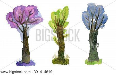 Three Beautiful Trees A Bit Fabulous And Cartoon. Watercolor