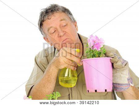 Nurseryman Sprays Seedlings