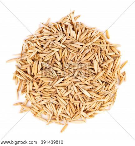Unpeeled Oat Grains, Isolated On White Background. Organic Dry Oat Seeds. Top View.