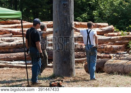 Prospect, Oregon / Usa - August 16, 2014:  Three Competitors At The Prospect Hillbilly Jamboree And