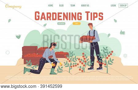 Harvesting Gardening Tips Online Service Landing Page Design Template. People Farmer In Overalls Pic
