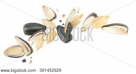 Sunflower Seeds With Hull Flying On White Background. Banner Design