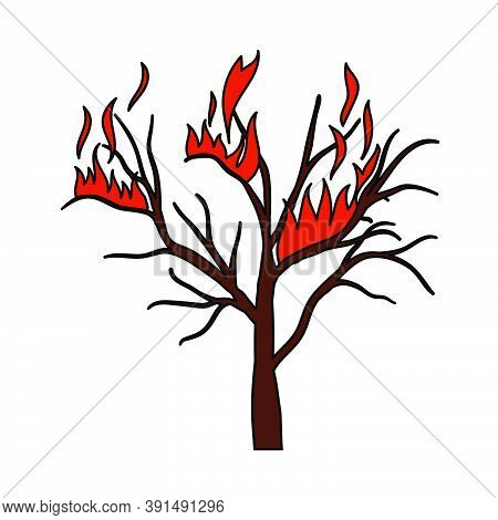 Wildfire Icon. Editable Outline With Color Fill Design. Vector Illustration.