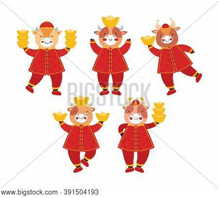 Chinese New Year 2021 Ox. Set Cute Baby Bulls In Traditional Red Chinese Clothes With Gold Coins And
