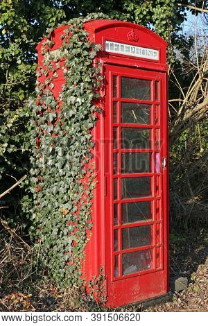 Red British Disused Telephone Box In Rural Location Repurposed As A Community Library With Ivy, Hede