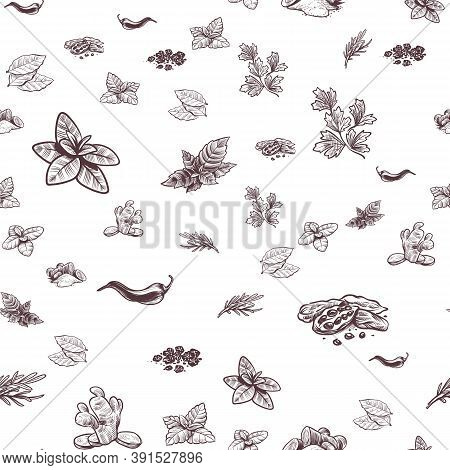 Herbs And Seamless Pattern. Hand Drawn Ginger, Chilli And Black Pepper, Oregano And Bay Leaf, Cardam