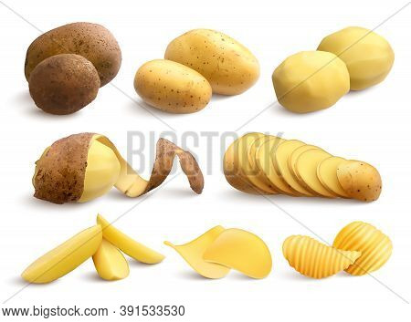 Raw And Fried Potato Set Of Crude Treated Chopped And Chips On White Background Realistic Vector Ill